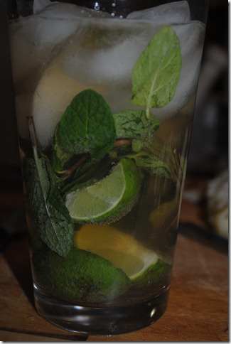 picture of a Paleo Mojito